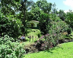 Arenal Property