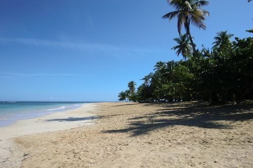 Playa Coson, Las Terrenas